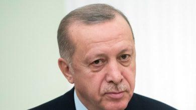 صورة أردوغان يبدي استعداده لعقد اتفاق مع طالبان على غرار ليبيا