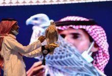 صورة السعودية.. بيع أغلى صقر في العالم بـ467 ألف دولار