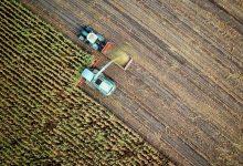 صورة تقنية جديدة تمكن الصين من تحويل الصحاري إلى أراض صالحة للزراعة