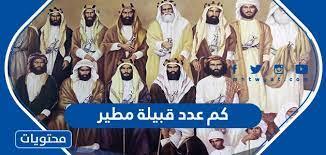 صورة كم عدد قبيلة مطير في السعودية