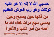 صورة من قال حسبي الله لا اله الا هو عليه توكلت وهو رب العرش العظيم