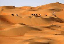 صورة دراسة تُفجِّر مفاجأة بشأن شبه الجزيرة العربية: هذا ما كانت عليه المناطق الصحراوية في السعودية قبل 400 ألف سنة