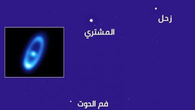 صورة فلكية جدة: نجم الخريف يتلألأ في سماء السعودية والوطن العربي