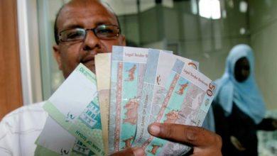 صورة لدعم اقتصاده.. النقد الدولي يخصص 857 مليون دولار للسودان