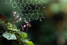 صورة فروع العلوم الطبيعية