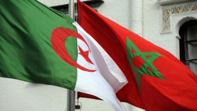 صورة معركة ماك والبوليساريو.. هل تتمكن السعودية من حل الصراع المغربي الجزائري؟