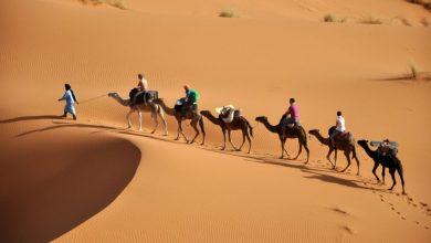 """صورة مساعي أمريكية لتراجع عن الاعتراف بـ """"مغربية"""" الصحراء"""