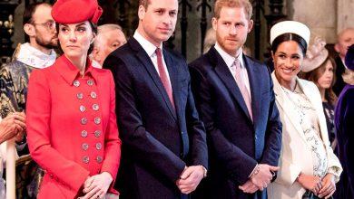 """صورة رغم الخصام.. """"الأميرة ديانا"""" تجمع شمل وليام وهاري مجددا"""