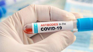 """صورة الصحة العالمية: هذه نسبة من لديهم مناعة لفيروس """"كورونا"""""""