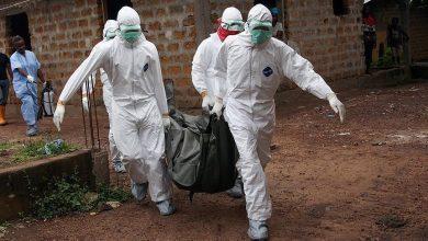 """صورة الصحة العالمية تعلن """"مفاجأة مدوية"""" بشأن فيروس إيبولا"""