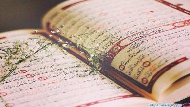 صورة اسئلة دينية اسلامية عامة ستُدهش عند معرفتها