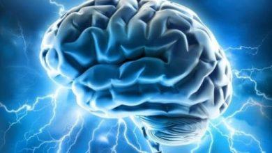 صورة ما الذي يقلل نشاط الدماغ؟