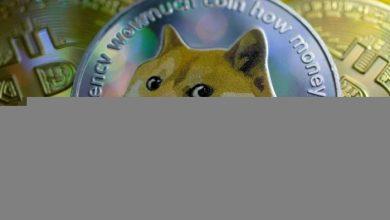 صورة تفاصيل حول صعود عملة دوجكوين لأكثر من 50%