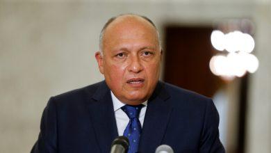 صورة وزير الخارجية المصري يكشف أبعاد الاتصال الذي أجراه معه نظيره التركي