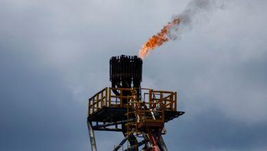 صورة النفط يواصل الصعود