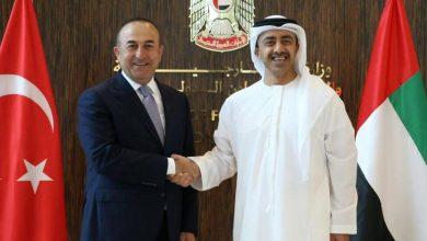 صورة أول اتصال بين وزيري خارجية تركيا والإمارات منذ سنوات