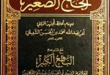 صورة من هو مؤلف كتاب الجامع الكبير ؟