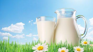 صورة لماذا لون الحليب أبيض؟