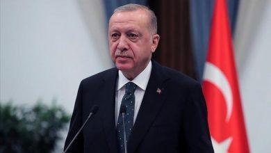 صورة أردوغان يكشف عزم الإمارات إقامة استثمارات كبيرة في تركيا