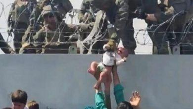 صورة تطورات جديدة بشأن الرضيع الأفغاني الذي تقاذفته الأيادي في مطار كابل.. والكشف عن مصير أسرته – صورة