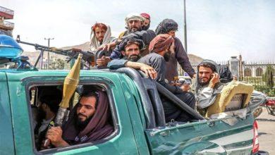 صورة حركة مجتمع السلم الجزائرية: على طالبان القيام بمراجعات عديدة