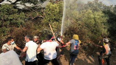 صورة عدد الضحايا وصل إلى 90.. الجزائر تواصل إخماد آخر الحرائق في البلاد