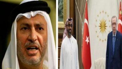 صورة قرقاش يكشف كواليس ما دار بين مستشار الأمن الإماراتي وأردوغان.. وهكذا وصف اللقاء!