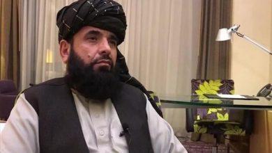 صورة متحدث طالبان: لنساء أفغانستان كامل الحقوق إذا التزمن بالحجاب