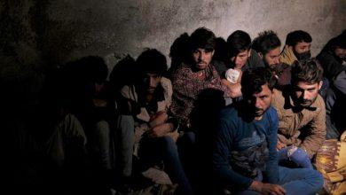 صورة مستشار النمسا: أرفض استقبال مزيد من اللاجئين الأفغان