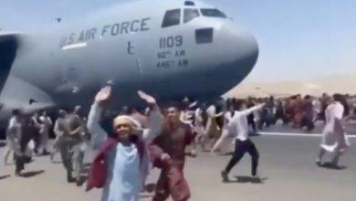 صورة معلومات عن الطائرة الضخمة التي نقلت 640 أفغانيا من كابل إلى قطر في رحلة واحدة