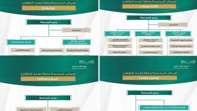 صورة منها بدون وكيل.. التعليم تعلن عن نماذج الهيكل التنظيمي للمدارس وفقًا لعدد الطلاب