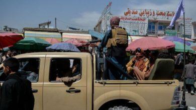 صورة ميركل تهاتف أمير قطر بخصوص أفغانستان