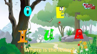 صورة تعرف على حروف العلة الانجليزية