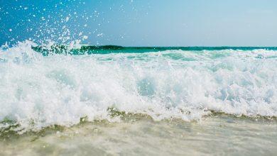 صورة هل يجوز الوضوء بماء البحر