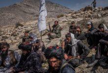 صورة هل طالبان خوارج