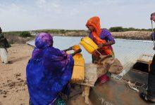 صورة هل الصومال دولة عربية