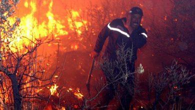 صورة تعرف على جمال بن سماعيل المتهم بحرائق الجزائرمن هو جمال بن سماعيل المتهم بحرائق الجزائر