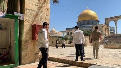 صورة قطعان المستوطنين يجددون اقتحام المسجد الأقصى