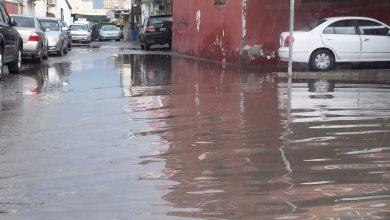 صورة تسقط الأمطار في جميع فصول السنة على