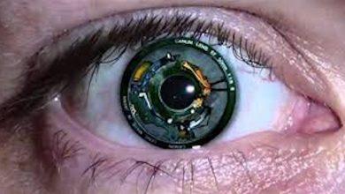 صورة هل خلايا المخاريط في شبكية العين تمكننا من رؤية الضوء الباهت