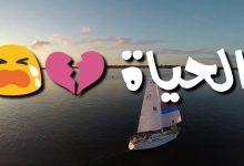 صورة ماذا قصد الكاتب بقوله الحياة مد وجزر