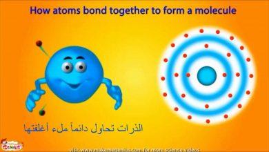 صورة ما هي الجسيمات ذات الشحنة السالبة في الذرة ؟
