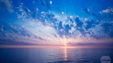 صورة معلومات عن البحر الميت
